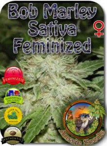AU_Bob_Marley_Sativa_Feminized_Seeds