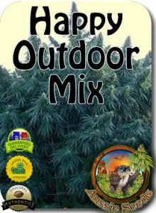 AU_Happy_Outdoor_Mix_Seeds