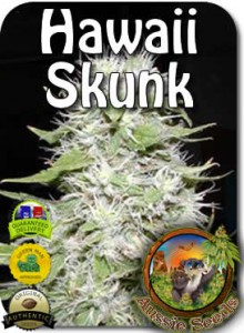 AU_Hawaii-Skunk_Seeds