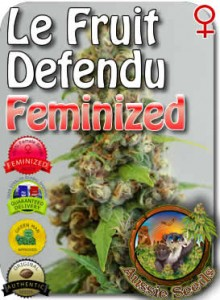 AU_Le_Fruit_Defendu_Feminized_Seeds
