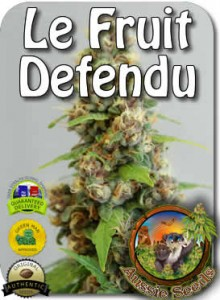 AU_Le_Fruit_Defendu_Seeds